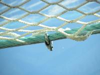Предпазни мрежи
