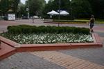 цялостно озеленяване на обществени пространства