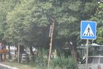 изработване на пътни знаци със специални предписания